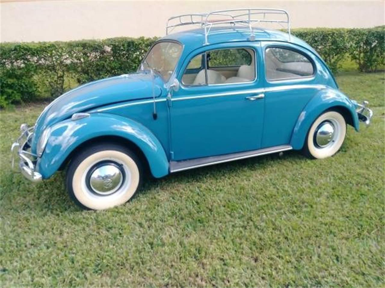 Large Picture of '61 Beetle - O2SS