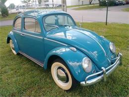 Picture of '61 Beetle - O2SS