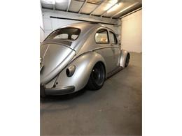 Picture of '61 Beetle - O2SU