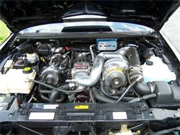 Picture of '96 Impala - O395