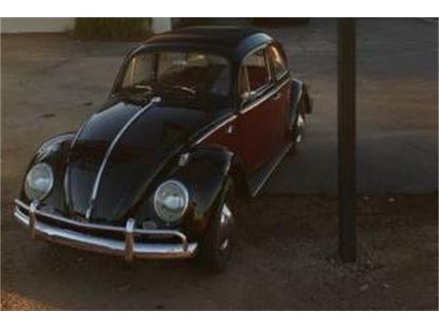 Picture of '63 Beetle - O3DT