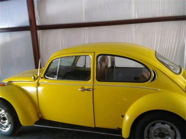 Picture of '71 Beetle - O3L3