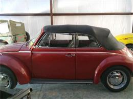 Picture of '75 Beetle - O3L4