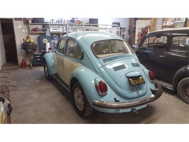 Picture of '71 Super Beetle - O3S8