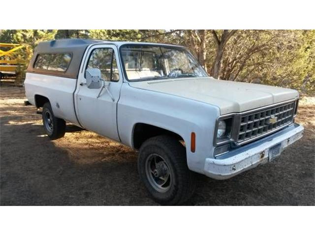 Picture of 1976 Chevrolet Pickup located in Cadillac Michigan - $7,995.00 Offered by  - O3SK