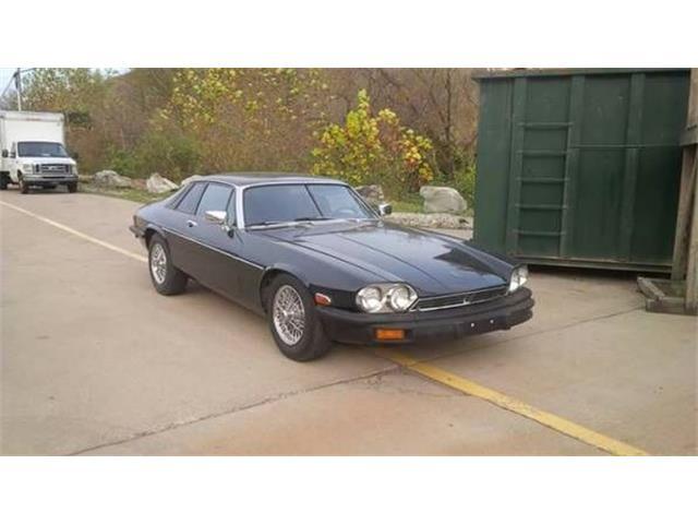 1979 Jaguar XJS