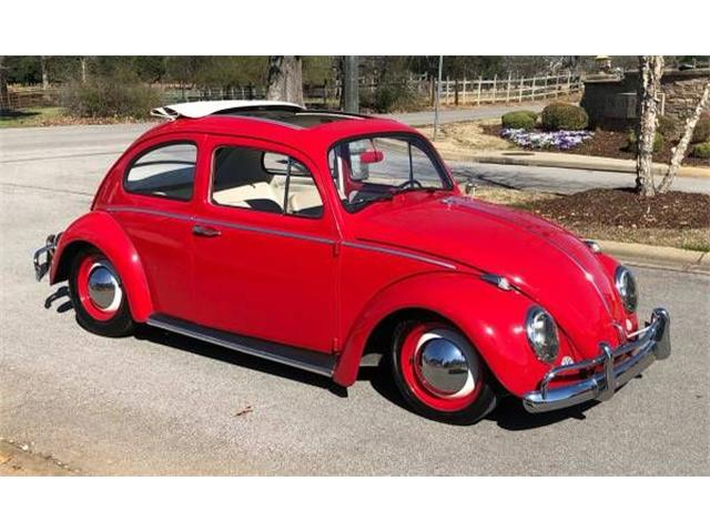 Picture of '63 Beetle - O45A