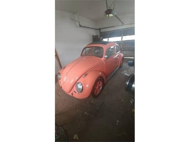 Picture of '60 Beetle - O4G3