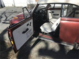 Picture of '78 Super Beetle - O4RF
