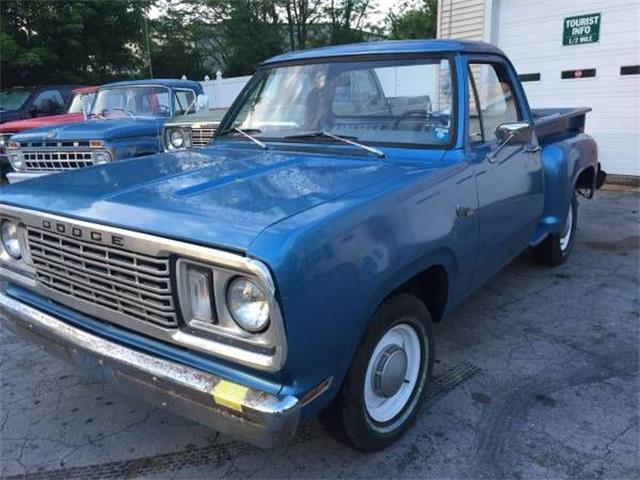 Picture of '78 D150 - O0NN