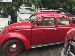 Picture of '61 Beetle - O0NQ