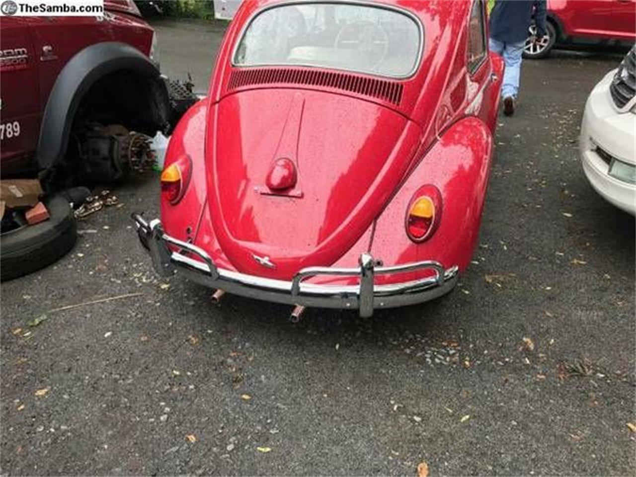 Large Picture of '61 Beetle - O0NQ