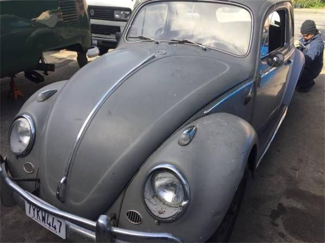 Picture of '63 Beetle - O4TS