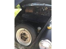 Picture of '64 Beetle - O54P