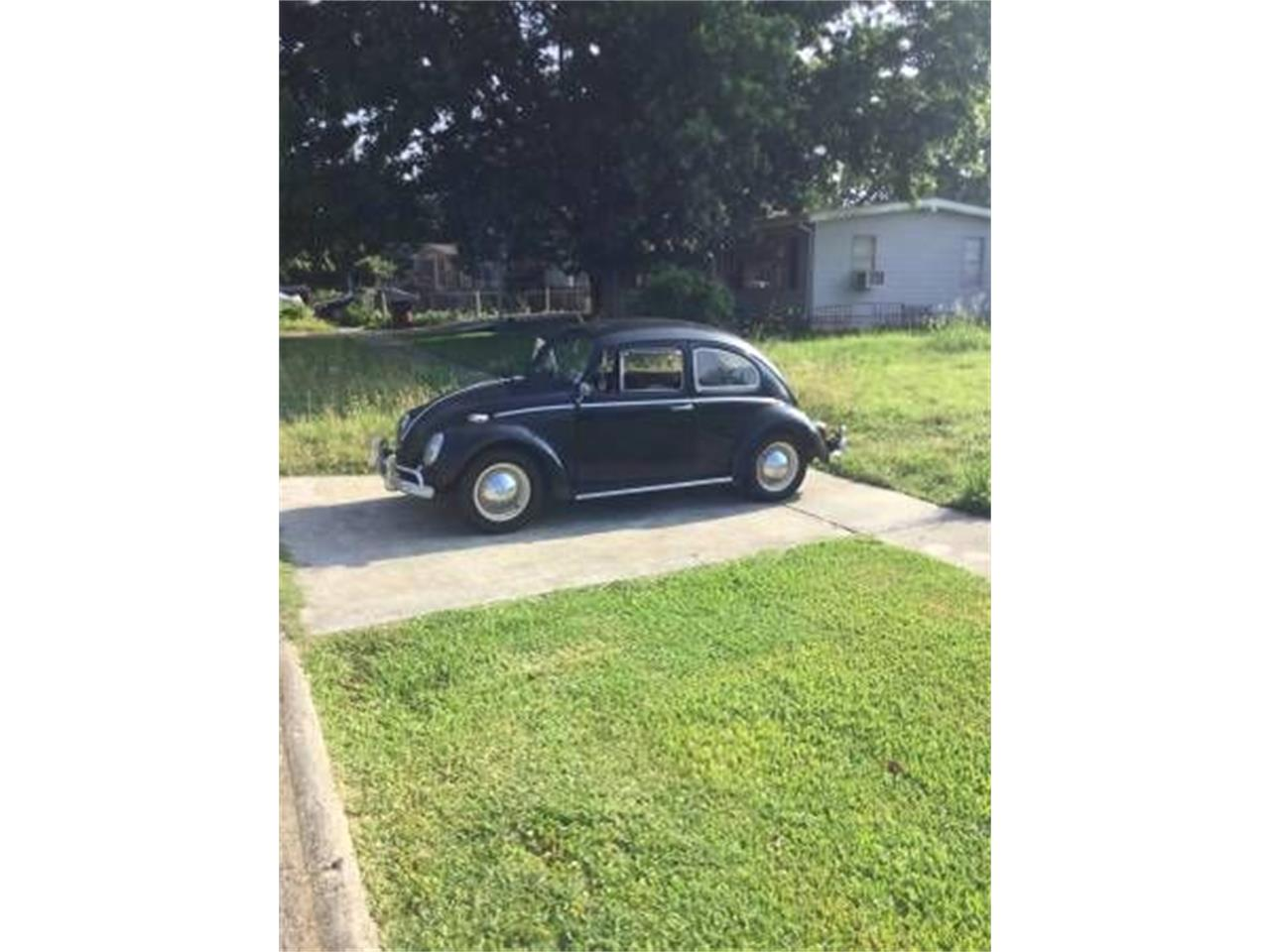 Large Picture of '64 Beetle - O54P