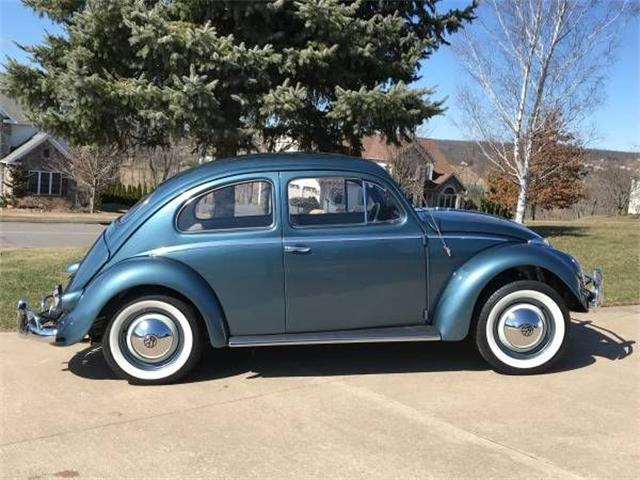 Picture of '58 Beetle - O5IR