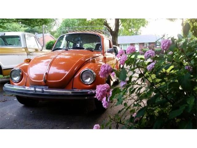 Picture of '74 Super Beetle - O5P5
