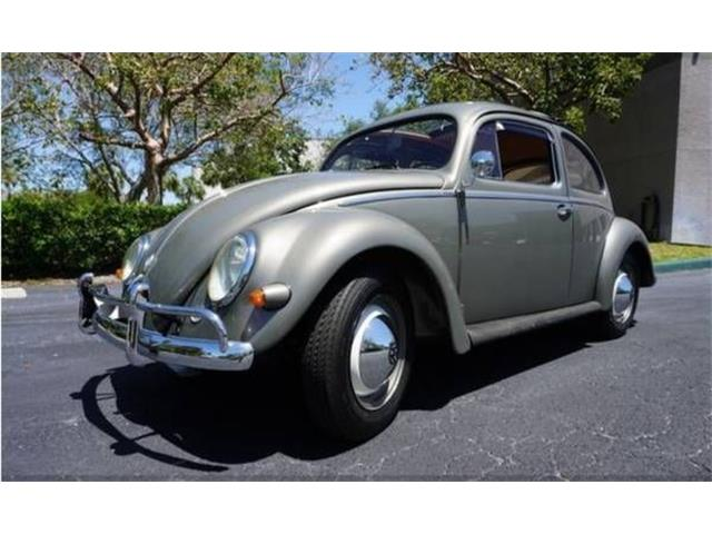 Picture of '58 Beetle - O5U8