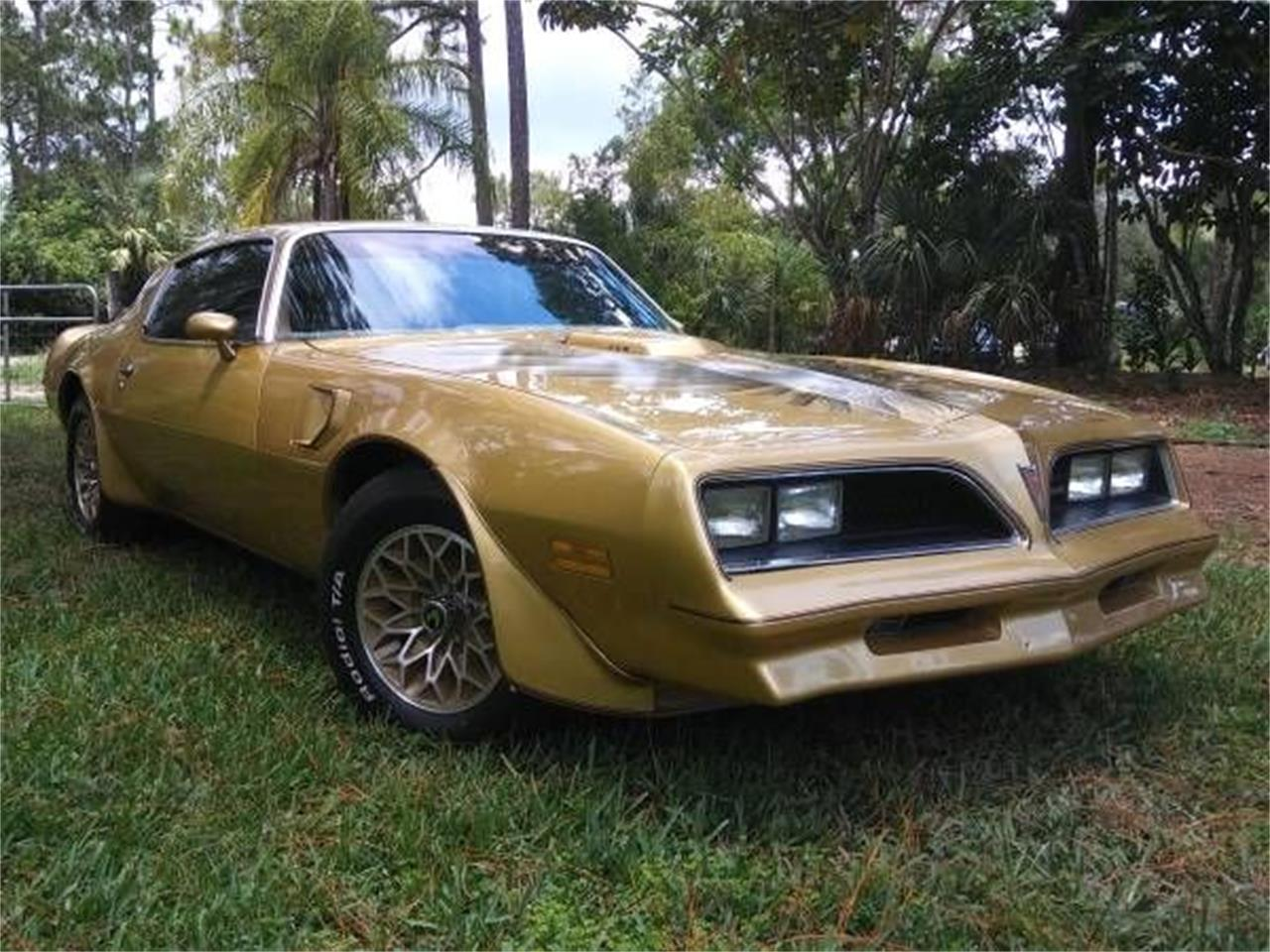 Large Picture of '78 Firebird Trans Am - O5WC
