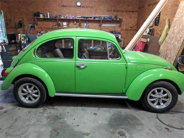 Picture of '71 Beetle - O5YX