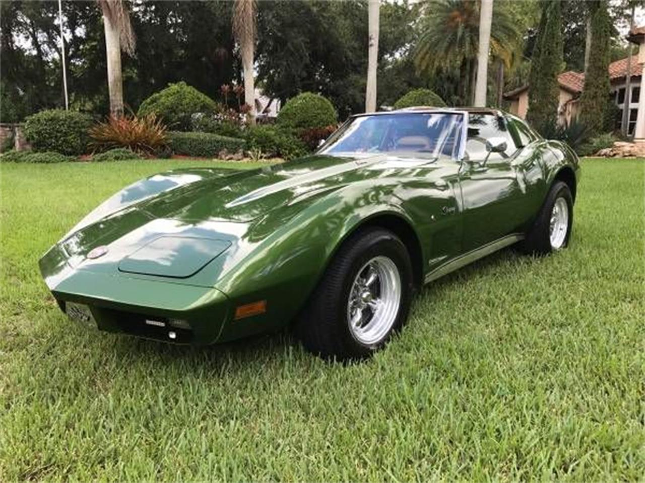 Large Picture of '74 Corvette - O0S9