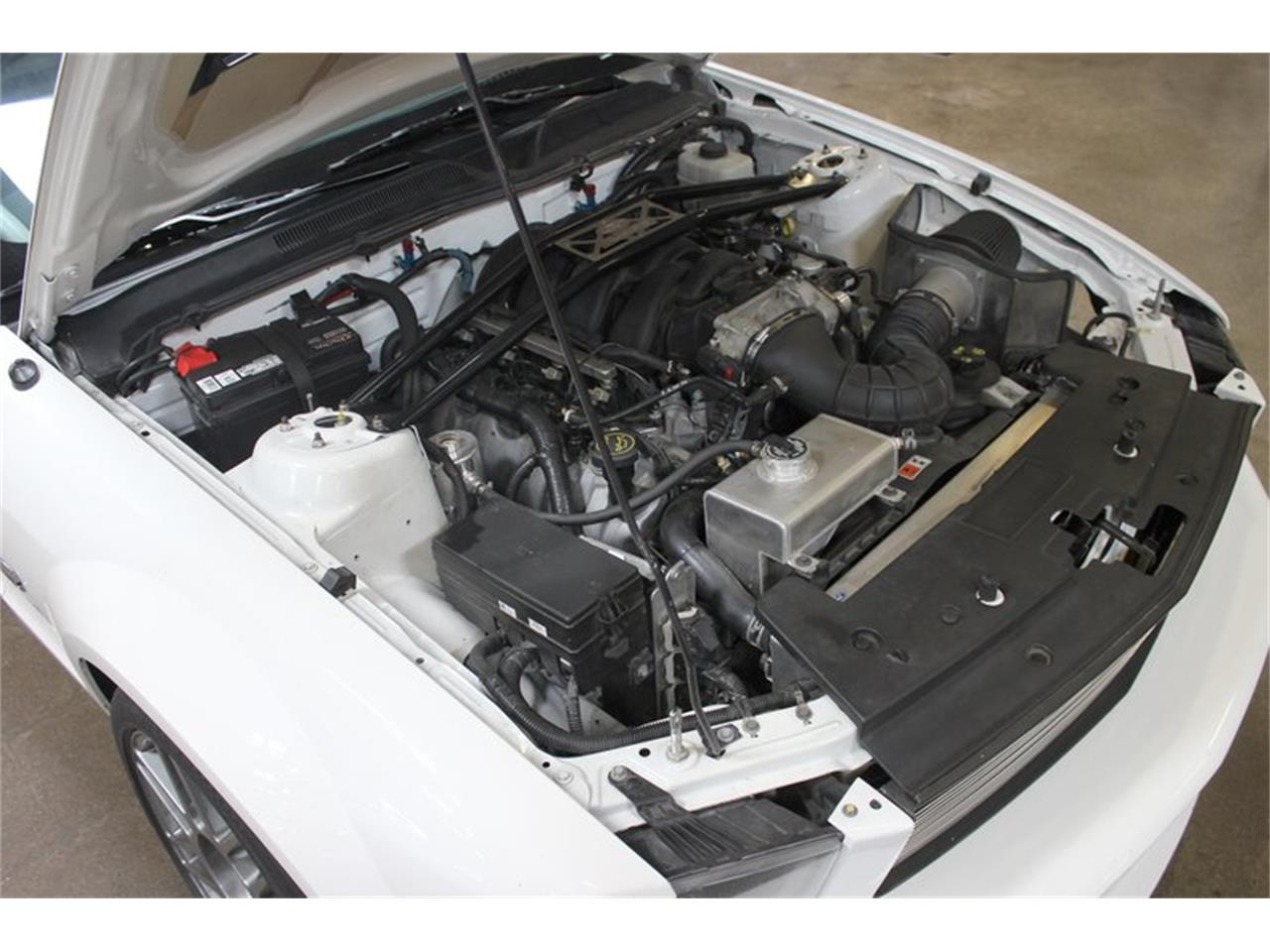 Large Picture of '07 Mustang - O68O