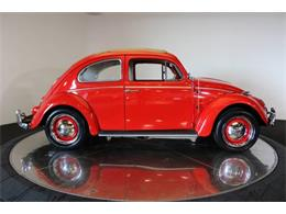 Picture of '60 Beetle - O69G