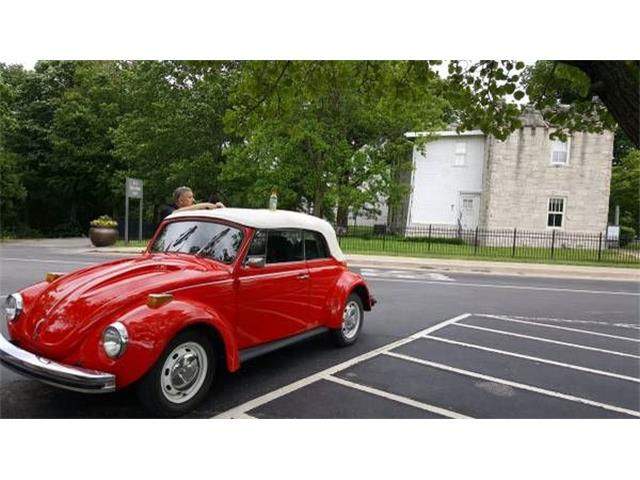 Picture of '72 Beetle - O09E