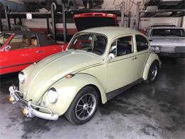 Picture of Classic '67 Beetle located in Henderson Nevada - O7EN
