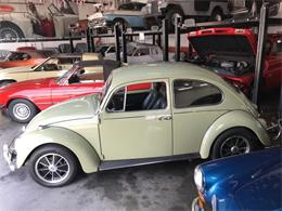 Picture of '67 Beetle - O7EN