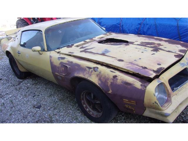 Picture of '76 Pontiac Firebird Trans Am located in Cadillac Michigan Offered by  - O0YM