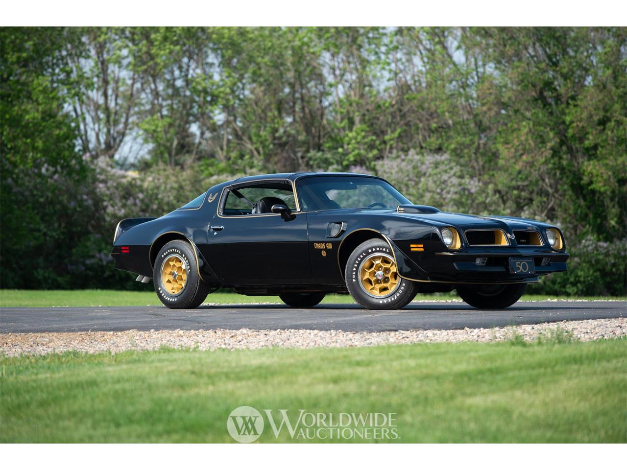 Picture of '76 Firebird Trans Am 50th Anniversary - O7ZV