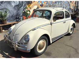 Picture of '62 Beetle - O9F3