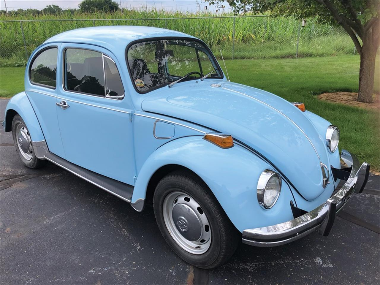 Picture of '71 Beetle - O9HJ