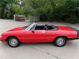 Picture of '85 Spider - O9V1