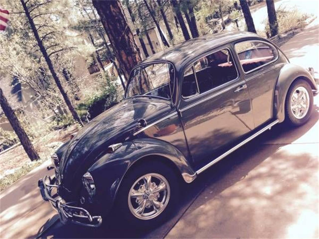 Picture of '67 Beetle - O9ZW