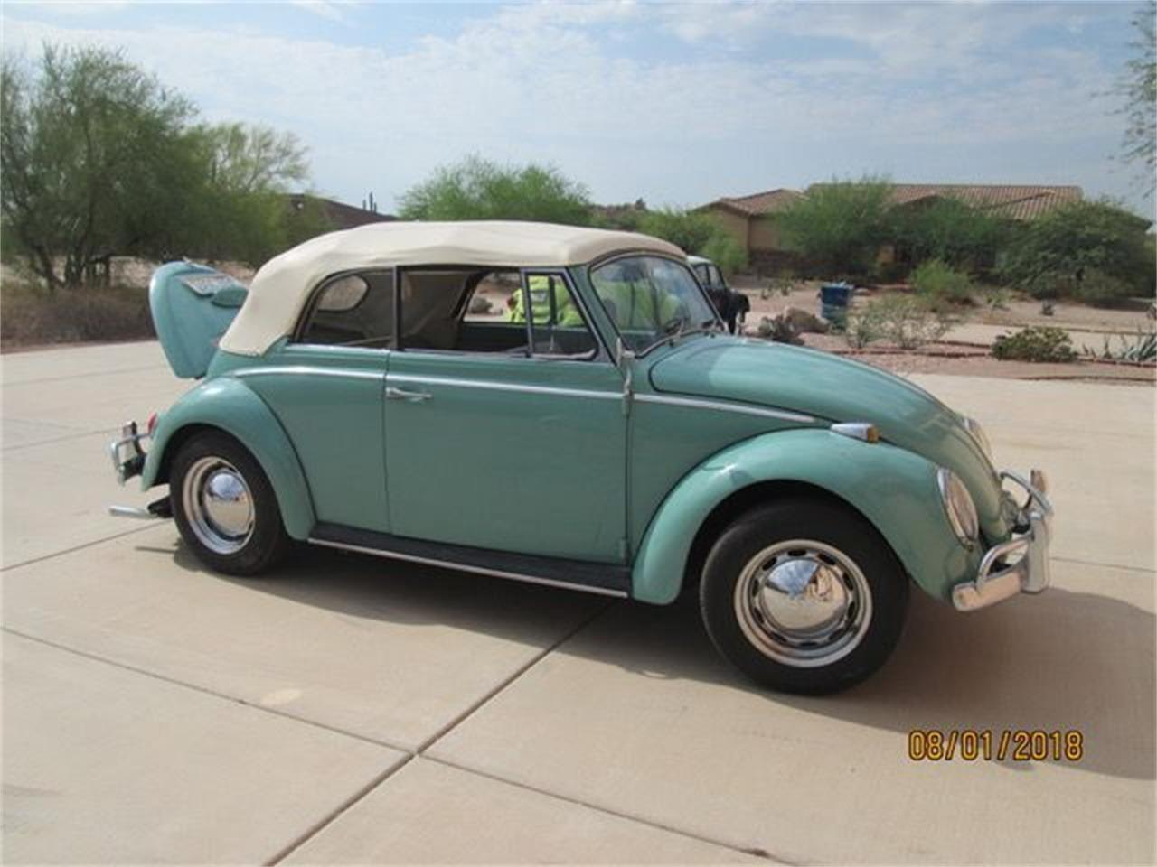 Picture of '66 Beetle - OA13
