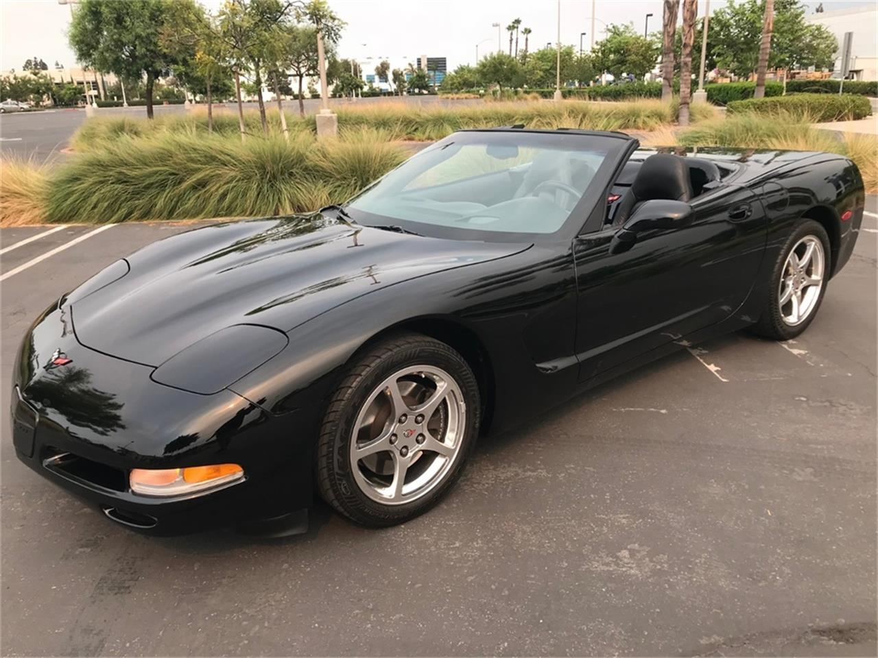 Picture of '04 Corvette - OABA