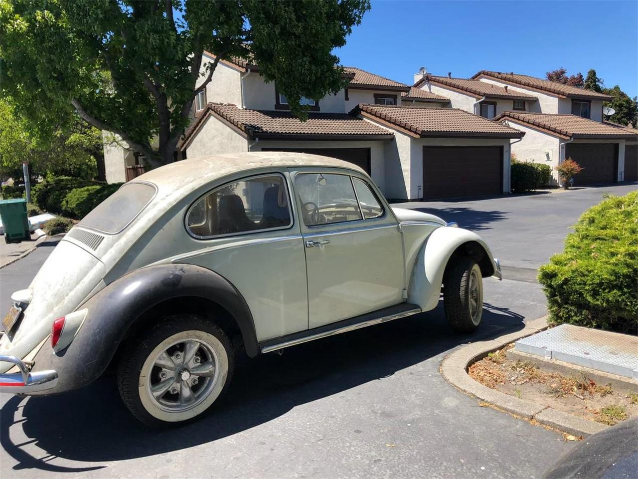 Large Picture of Classic 1966 Volkswagen Beetle located in San Pablo California - $7,400.00 - OAJG