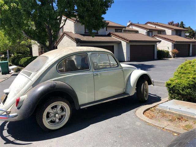 Picture of Classic 1966 Volkswagen Beetle Offered by a Private Seller - OAJG