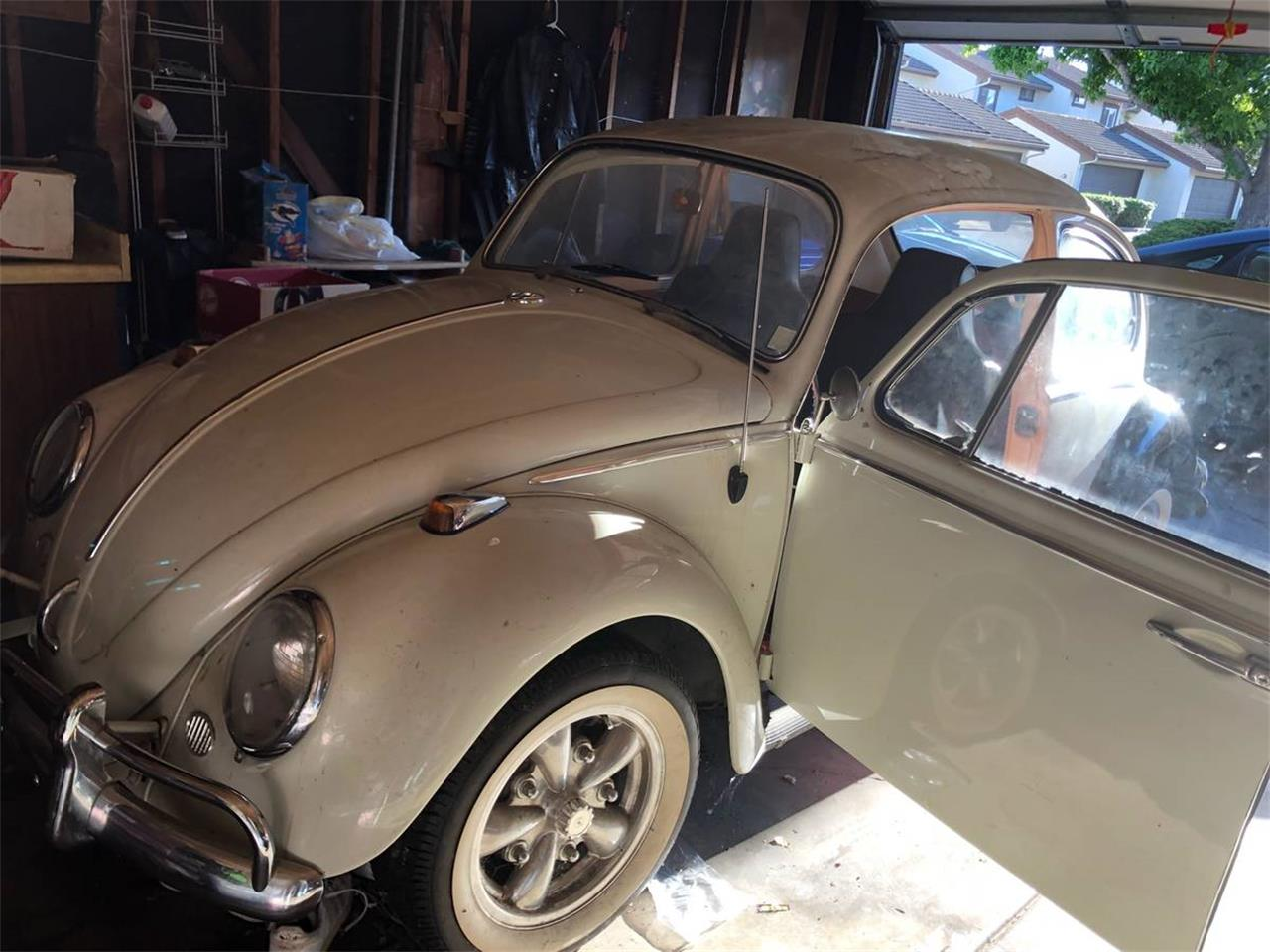 Large Picture of '66 Volkswagen Beetle located in San Pablo California - $7,400.00 Offered by a Private Seller - OAJG