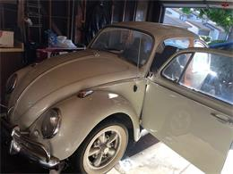Picture of Classic '66 Beetle located in California - $7,400.00 Offered by a Private Seller - OAJG