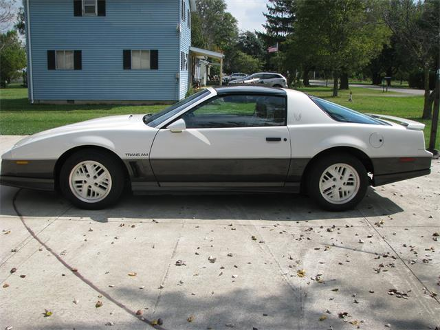 Picture of '83 Firebird Trans Am WS6 - OAYB