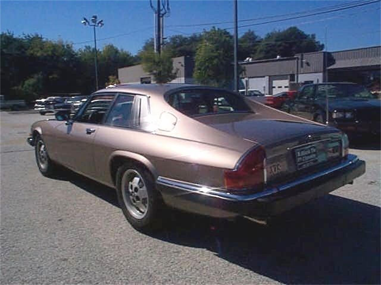 Large Picture of '85 XJS - OCFF