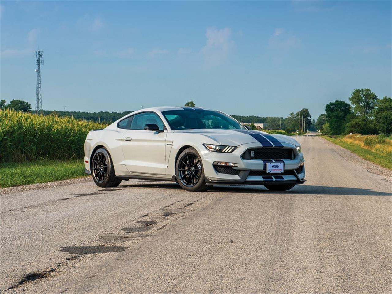 Picture of '16 Mustang - OCIH
