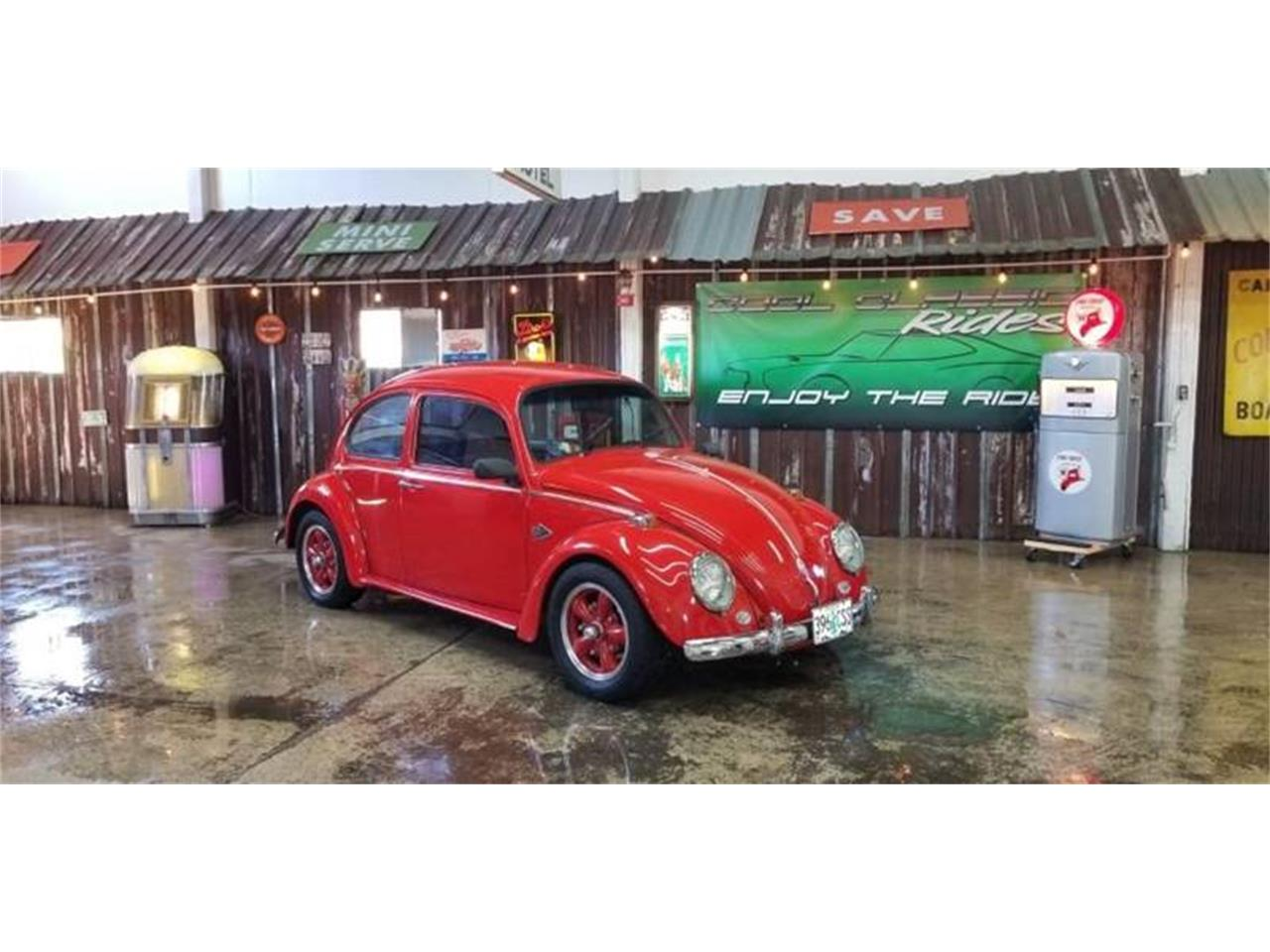 Picture of '66 Beetle - O8DK