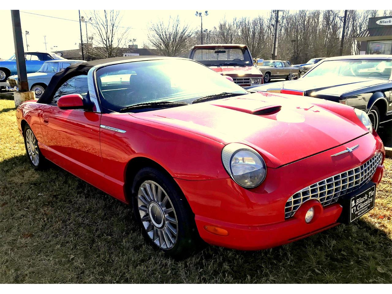 Large Picture of '05 Thunderbird - OCND