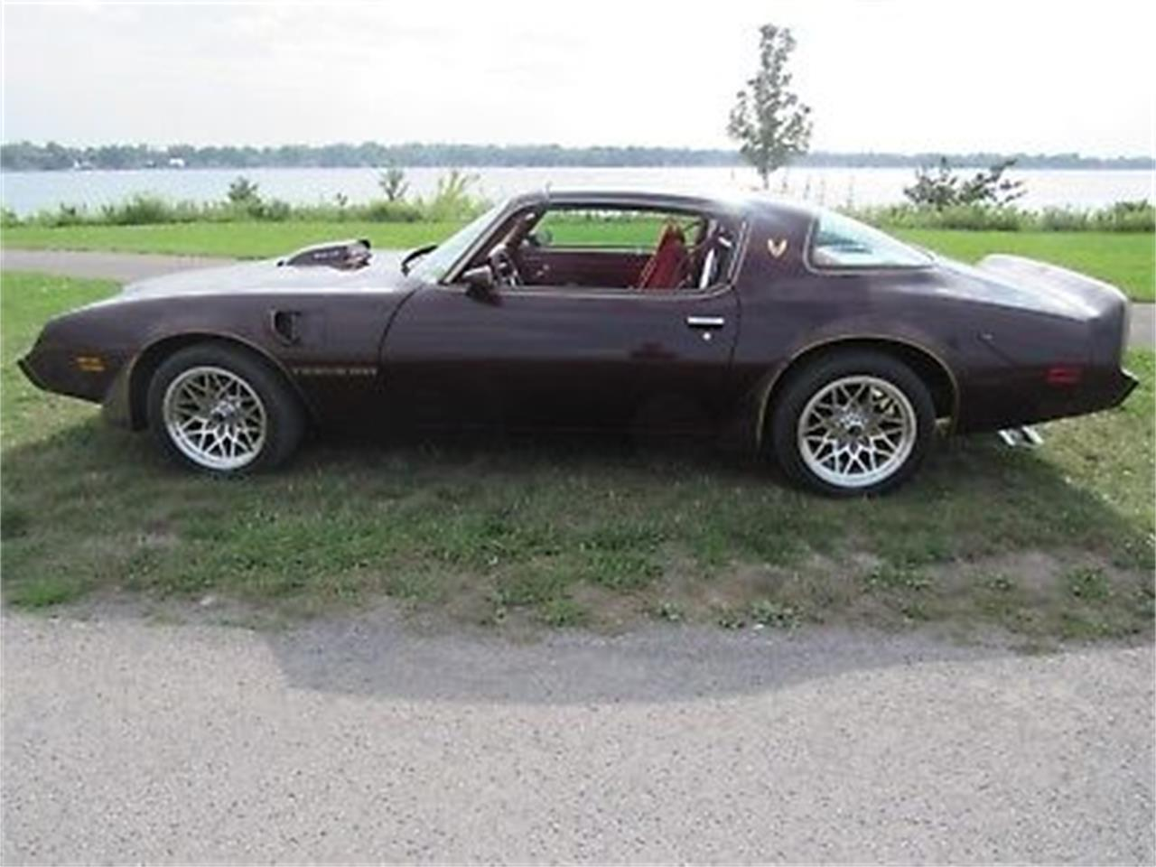 Large Picture of 1980 Pontiac Firebird Trans Am located in New York - $24,000.00 Offered by a Private Seller - OCWB