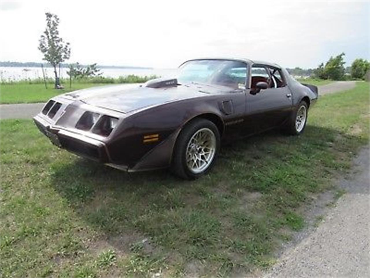 Large Picture of '80 Pontiac Firebird Trans Am located in New York - OCWB