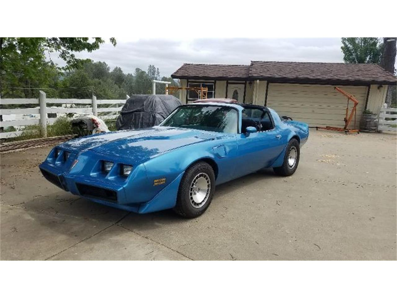 Large Picture of '80 Firebird Trans Am - ODLK